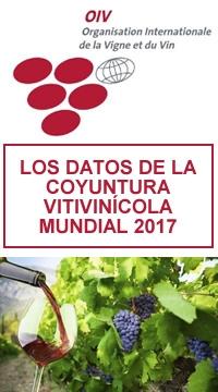 La producción mundial de vino en 2017, estimada en 246,7 Mill. hL, registró una disminución del 8,2 % con respecto a 2016