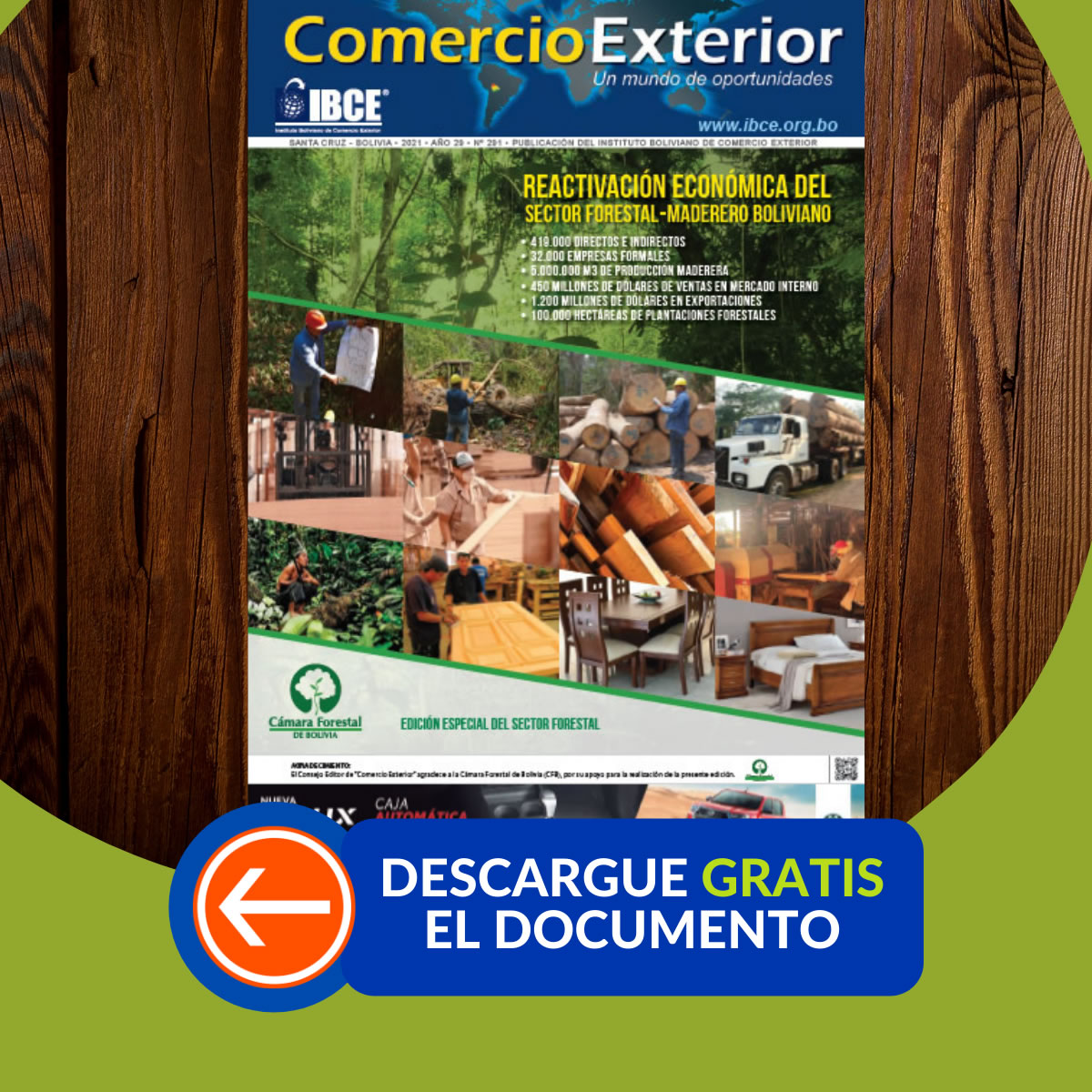 DESCARGA GRATIS: Reactivación Económica del Sector Forestal - Maderero Boliviano